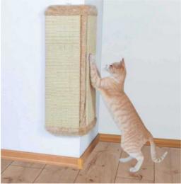 Chat qui griffe la tapisserie